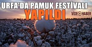 Pamuk için Urfa'da festival düzenlendi