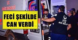 Viranşehir'de Pamuk Toplayan Adamı Yıldırım Çarptı