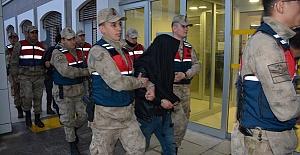 Koyun Hırsızlarına Operasyon: 7 Kişi Gözaltına alındı