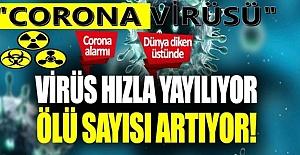 Virüs Hızla Yayılıyor! Şimdide Bahreyn ve Kuveyt'te Görüldü