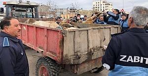 Zabıta, Kaçak Kesim Yapanlara Operasyon Düzenledi