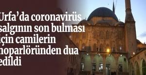 Urfa'da coronavirüs salgının son bulması için camilerde dua edildi