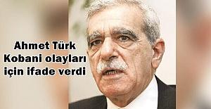 Ahmet Türk:  Kobani'ye Urfa valisinin ve Suruç Kaymakamlığı'nın izni ile gittim