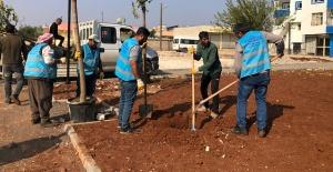 Eyyübiye Millet Bahçesinde Çalışmalar Devam Ediyor