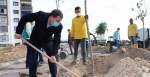 Yemyeşil Karaköprü İçin Belediye Çalışmalarını Hızlandırdı