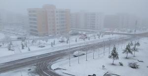 Urfa'da yılın ilk karı düştü!