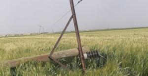 Fırtına Şanlıurfa'da onlarca Elektrik direğini devirdi