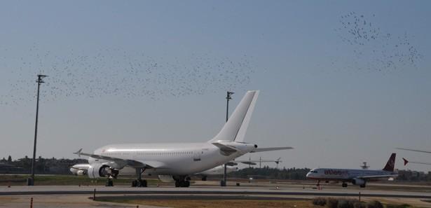 Ermenistan uçağı indirildi, arama yapılıyor
