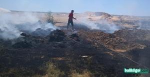 Şanlıurfa'da anız yangınları başladı