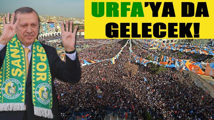 Cumhurbaşkan adayı Erdoğan Urfa'ya geliyor