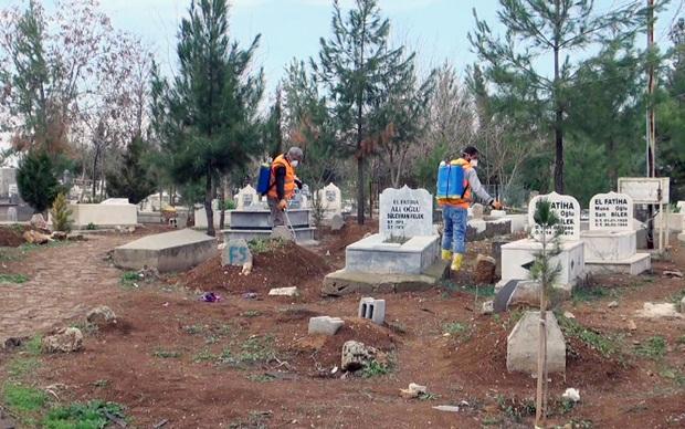Mezarlıktaki Yabancı Otlarla Mücadele