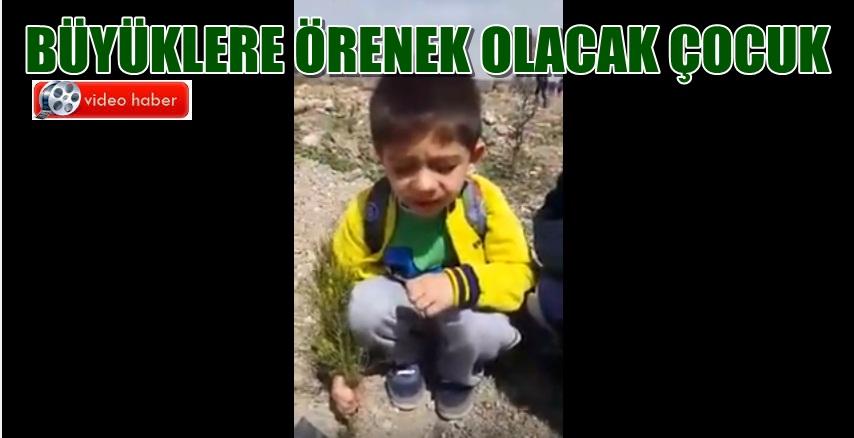 Urfalı küçük çocuk orman sevgisini böyle gösterdi!