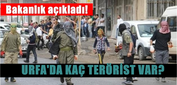 Urfa'da Kaç Terörist var - Hangi ilde kaç terörist var? Bakanlık açıkladı