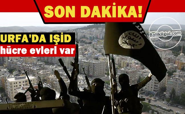 Şok İddia! Urfa'da IŞİD hücre evleri var.. IŞİD Hücre evi nerededir?