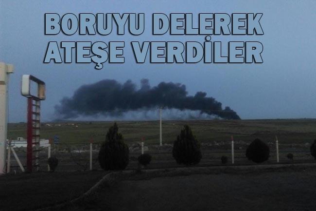 Siverek'te BOTAŞ petrol boru hattı ateşe verildi