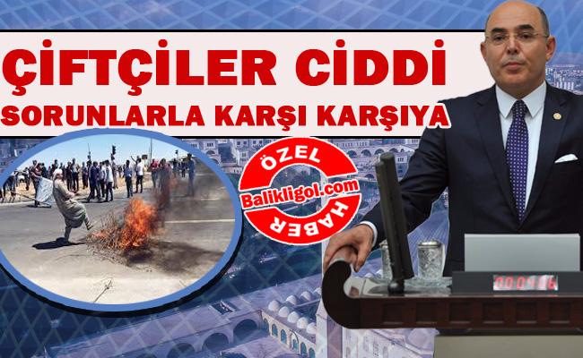 Urfa'nın elektrik kesintileri dillere destan-MHP: Çiftçi mağdur edilmesin!