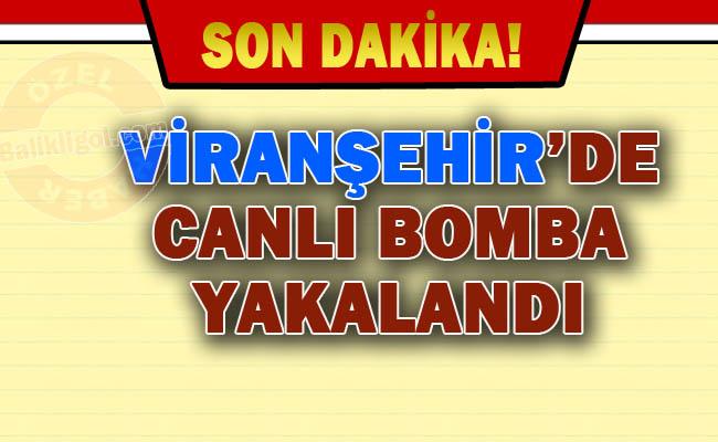Viranşehir'de Canlı Bomba baskını - 3 Terörist öldürüldü