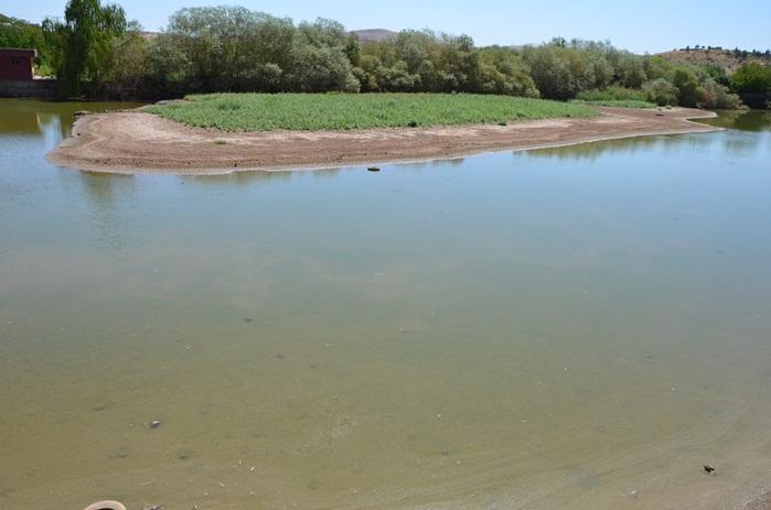 Bozova'daki göllerinde temizlik çalışması başlatıldı