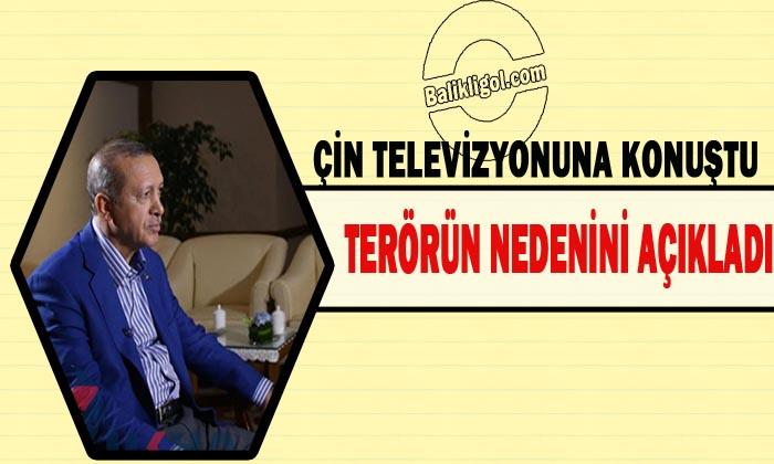 Erdoğan: Yeraltı madenleri nedeniyle terörün hedefindeyiz