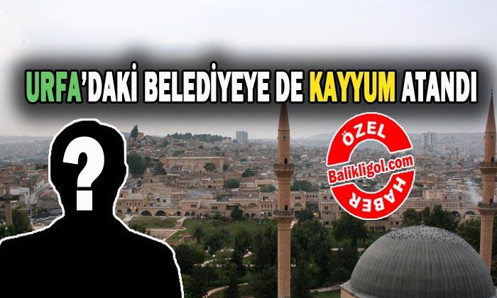 Urfa'da kaç belediyeye kayyum atandı? işte kayyum atanan belediye